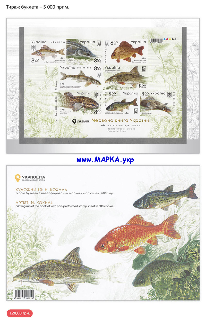 буклет рыбы 2019