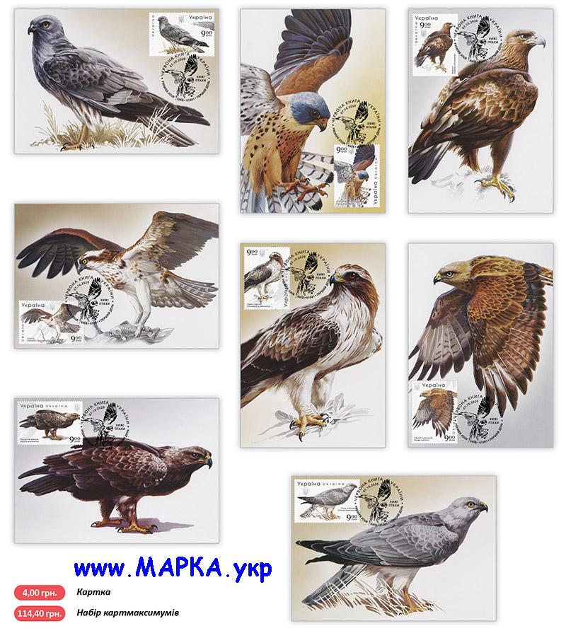 украинские птицы