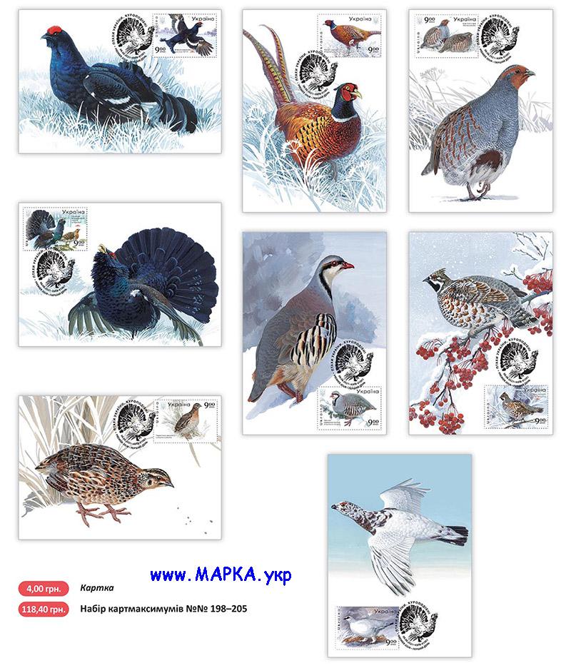 украинские птицы 2021