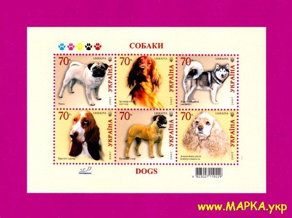 2007 блок Фауна Собаки Украина
