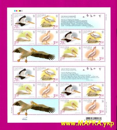 2007 лист Фауна Пеликаны С КУПОНОМ Украина