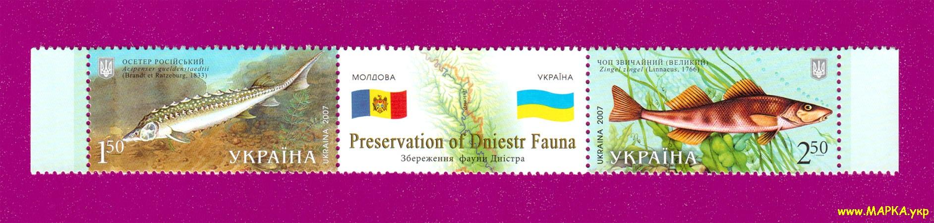 2007 сцепка Фауна Украина-Молдавия рыбы Украина