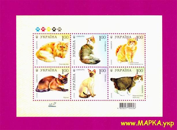 2008 блок Кошки Фауна Украина