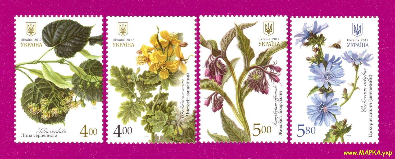 2017 марки Лекарственные растения флора СЕРИЯ Украина