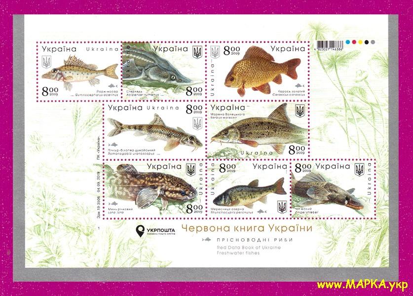 2019 блок Пресноводные рыбы Украины Фауна Украина