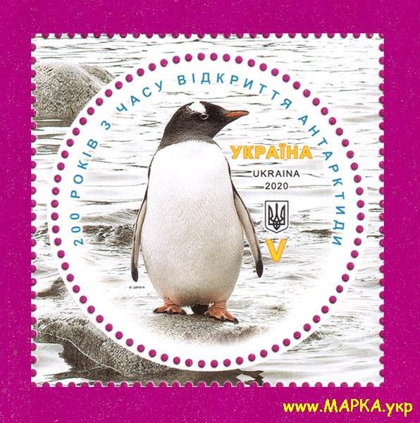 2020 марка 200 лет открытия Антарктиды Пингвин ЛИТЕРА V Украина
