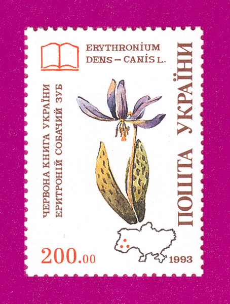 1994 N53 марка Цветы Собачий зуб Флора Украина