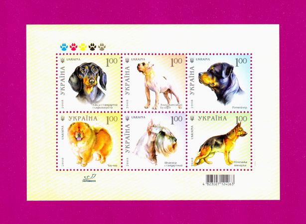 2008 блок Собаки Фауна Украина