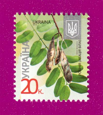 2012 N1170 марка 8-ой Стандарт  0,20 Акация Флора Украина