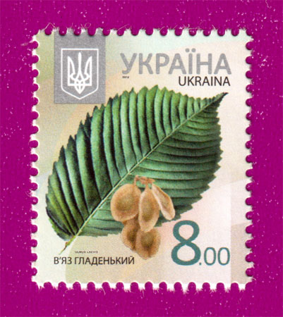 2012 N1177 марка 8-ой Стандарт  8,00 Вяз Флора Украина