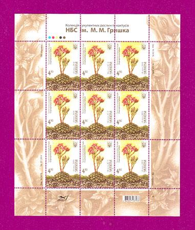 2014 лист Кактус флора 480 Украина