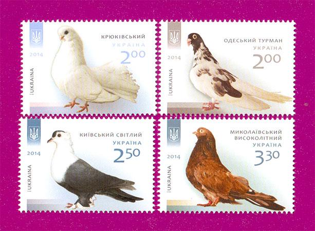 2014 N1399-1402 марки Голуби фауна СЕРИЯ Украина