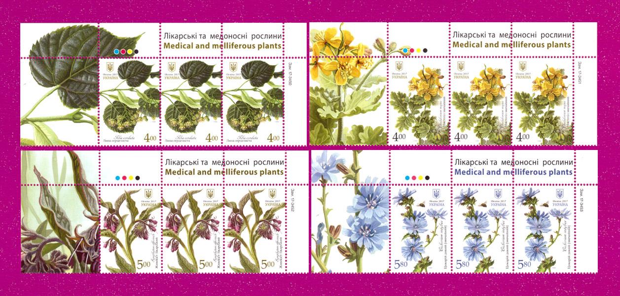 2017 часть листа Лекарственные растения флора ВЕРХ СЕРИЯ Украина