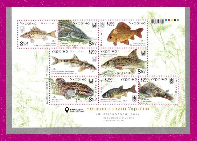 2019 блок Пресноводные рыбы Фауна Украина