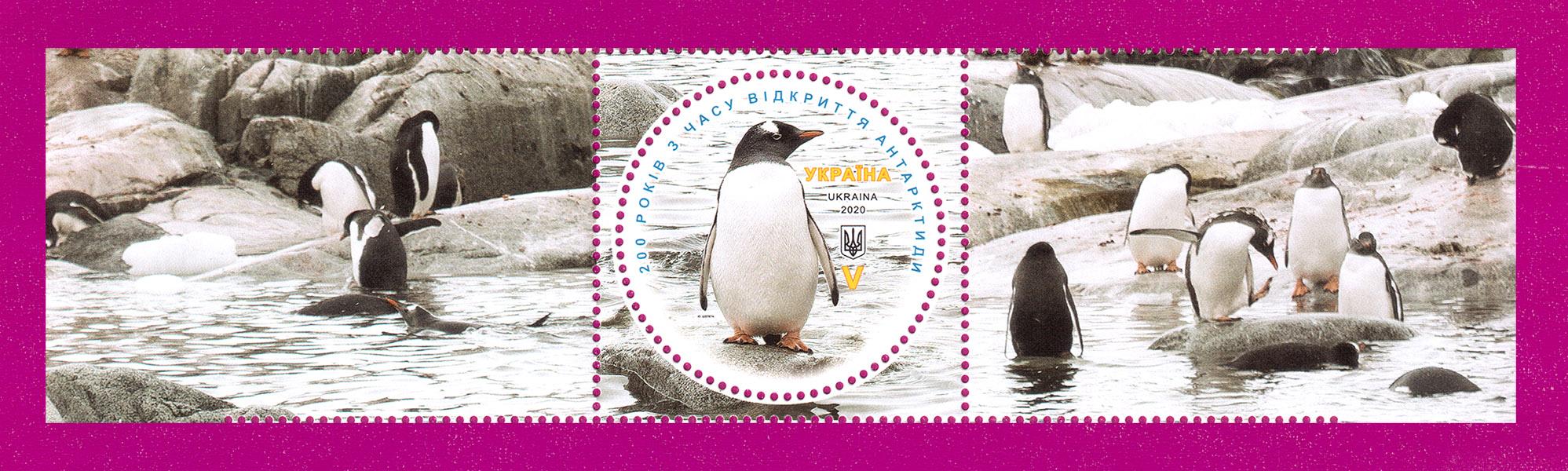 2020 марка Антарктида Пингвин С ДВУМЯ КУПОНАМИ ЛИТЕРА V Украина