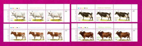 Part of the Minisheets Farm Animals Domestic cows SERIES UP