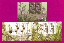 Parts of the Minisheet Orchids Flowers SERIES with coupons DOWN