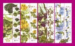 Растения ЧАСТЬ ЛИСТА