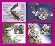 Птицы буклет с блоками