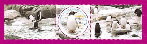 марка пингвины с купонами